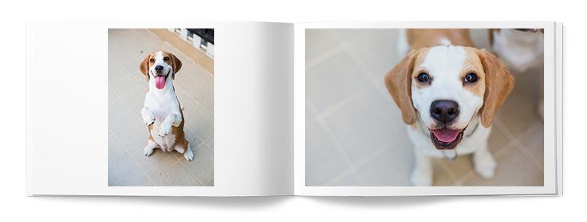 Fotolibri Gold Magazine Libro Esempio 1