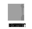 Ricami