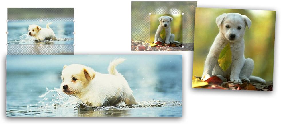 Photocity Silver - Ritaglia le immagini per il tuo fotolibro